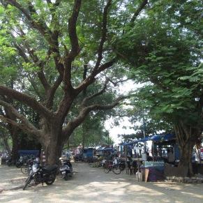 Promenade, Fort Kochi